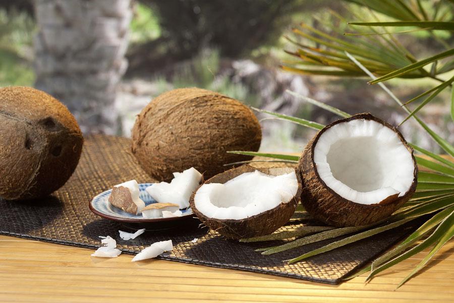 Kokosnüsse Für Rapunzel Köstliches Aus Sri Lanka