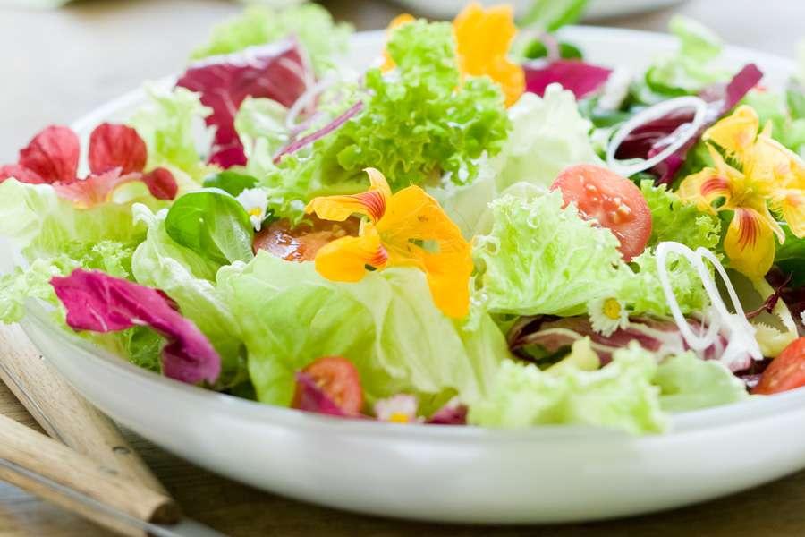 Bunter Salat mit Kürbiskernöl-Dressing
