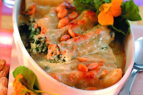 Cannelloni mit Mangold-Erdnuss-Füllung