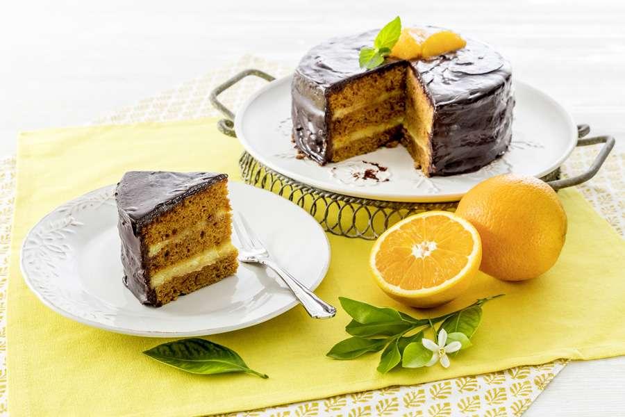 Kokosblüten-Orangentorte