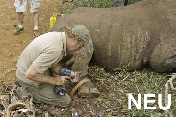 Protection of Rhinoceroses, South Africa